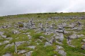 Paysage lunaire du Burren