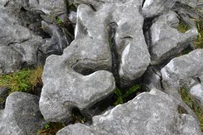 Cavités des pierres du Burren