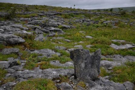 Paysage du Burren